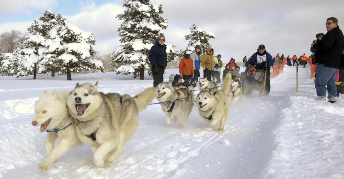 Friends of Punderson - Punderson Classic Dog Sled Race