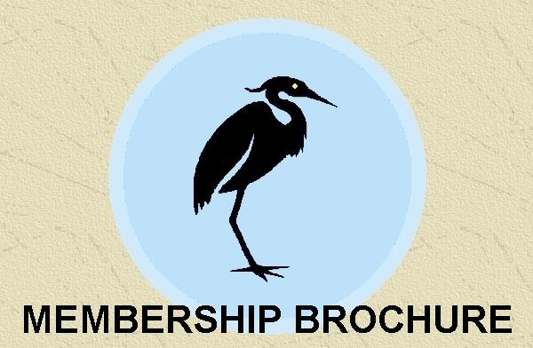 Friends of Punderson Membership Brochure (PDF)