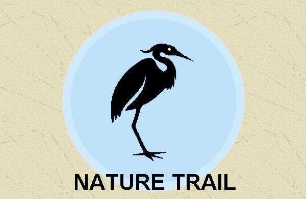 Friends of Punderson Nature Trail (PDF)